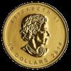 Canadian Gold Maple Leaf Obverse